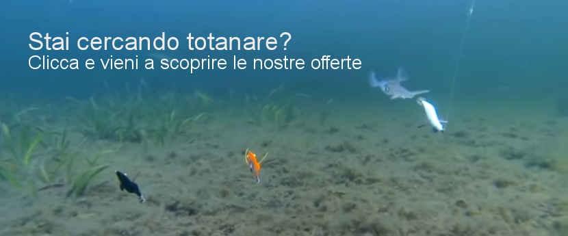 Totanare